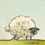 Thumb150_home-sheep-home-2